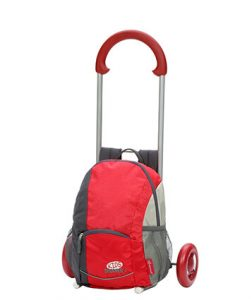 Kids shopping trolley in red