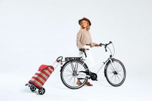 small trolley bike trailer