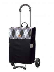 trendy 2 wheel trolley