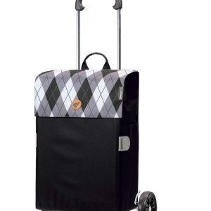 trendy 2 wheel trolley