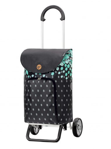 lightweight trendy trolley