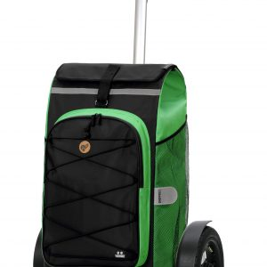green large bike trailer trolley